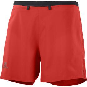 "Salomon Sense Shorts 5"" Men, rood"